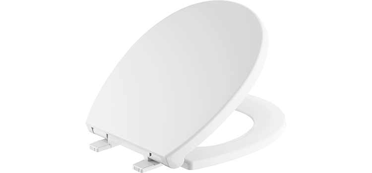 Delta Faucet Morgan Round Front Slow-Close Toilet Seat