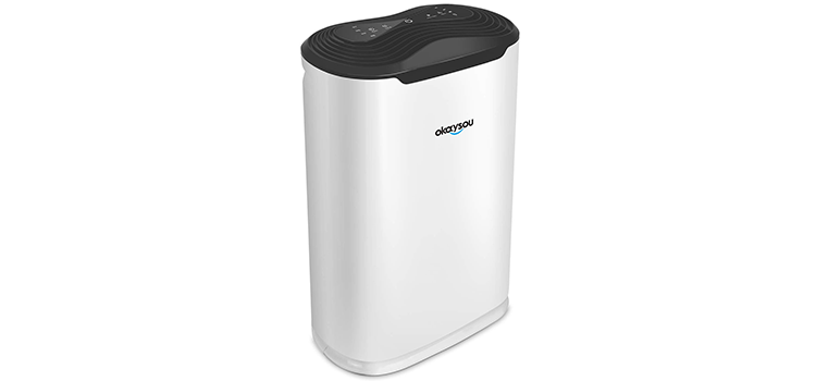 Okaysou AirMax8L 5-in-1 Air Purifier