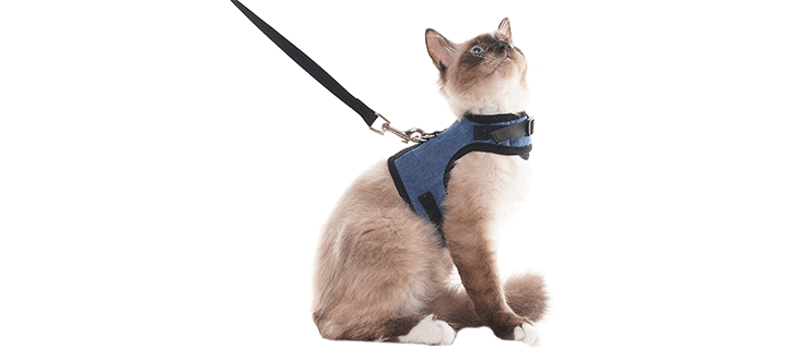 SCENEREAL Escape Proof Cat Harness